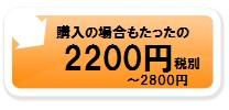 購入の場合もたったの2200円~2800円税別
